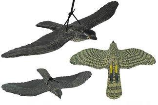 Duży jastrząb w locie – najskuteczniejszy odstraszacz ptaków 70 cm GW7308