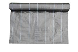 Agrotkanina czarna 0,6x25m 100g