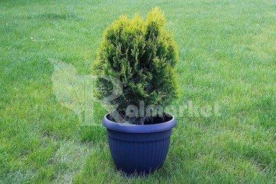 Doniczka ogrodowa Dona 32cm, antracyt