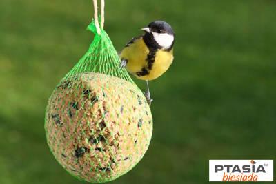Kula tłuszczowa zimowa dla ptaków 90g Natural-Vit 100szt karton