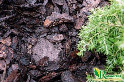 Polska agrowłóknina brązowa 1,6x50m (50g)