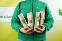 Polana ceramiczne do biokominków 4 sztuki – zestaw H (brzoza z sękami)